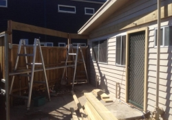 new-pergola-rosebud-before